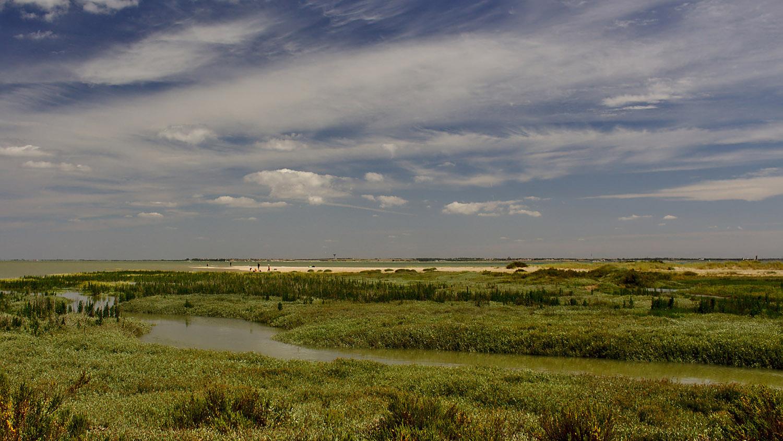 Paysage de la baie de l'Aiguillon - Life baie de l'Aiguillon