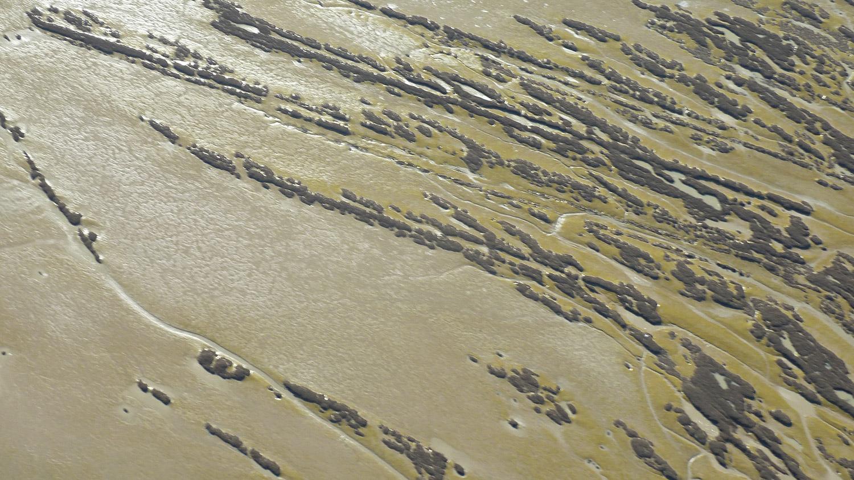 Vue aérienne de la vasière - Life baie de l'Aiguillon