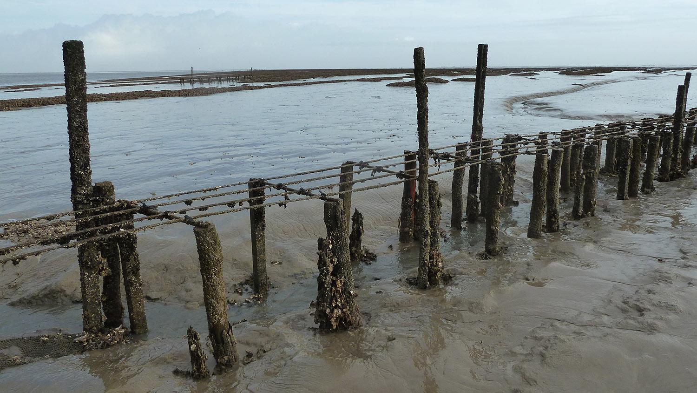 Ancienne table à huîtres en baie de l'Aiguillon