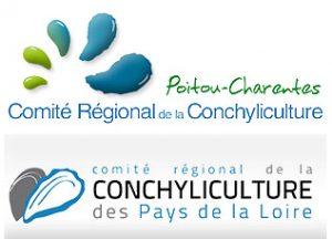 conchiliculture-logo